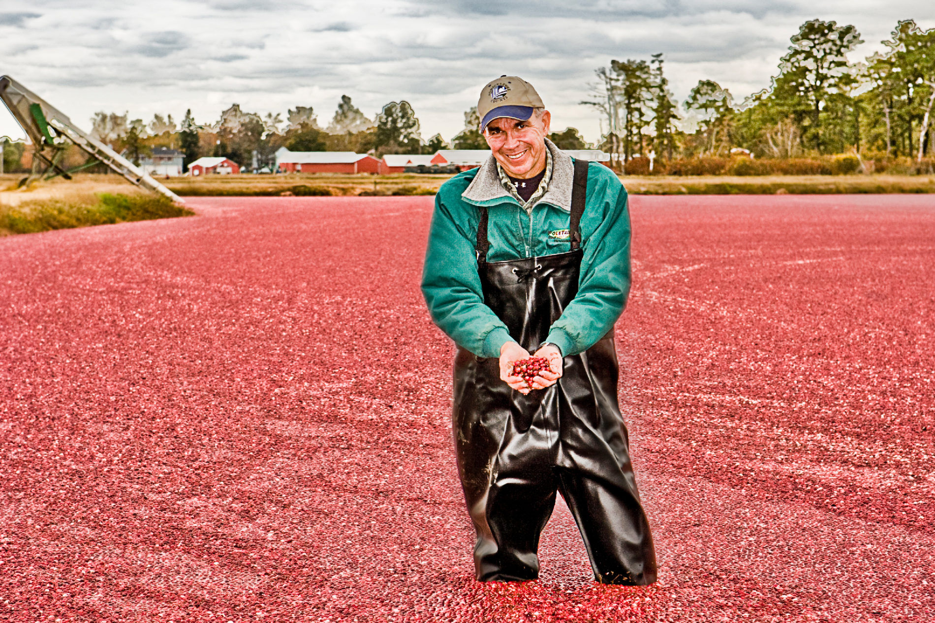 Tulsa Photographer in New Jersey Cranberry bog